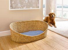 Hundekorb mit Kissen, groß