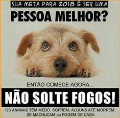 #2018 #filhode4patas #maedepet #paidepet #cachorro #filhote #gato #petshop #petmeupet