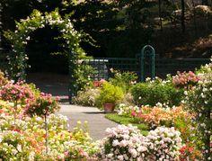new york botanical garden images | New York Botanical Garden | Goop