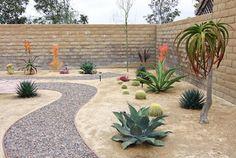 Dana Point, CA - Xeroscape Garden - tropical - exterior - orange county - by Shelley Gardea