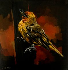 South African bird paintings by Grace Kotze South African Birds, South African Artists, Bird Paintings, Wild Animals, Online Art Gallery, Contemporary Art, Beautiful, Paintings Of Birds, Wild Ones
