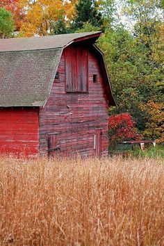 Love the colors of this Old Weathered Barn in the beautiful Fall Foliage..