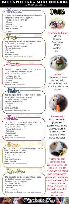 Mini Coelhos Baby: Cardápio para Mini Coelhos