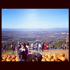 #UVa Carter's Mountain