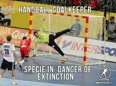 El portero de balonmano, una especie en extinción... ¡Cuidémosla! #handball #goalkeeper #balonmano #portero