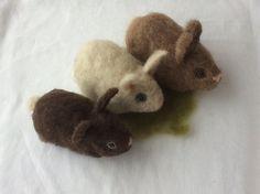 Three Baby Bunnies Needle Felt Kit, all meterials and tools, makes three lifesize baby bunnies Baby Bunnies, Bunny, Needle Felting Kits, Third Baby, Baby Sleep, Wool Felt, Crafty, Tools, Cute Bunny