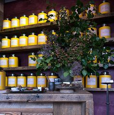 Love the yellow of Bellocq, plus the purple lighting in the photo—perfect