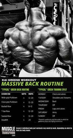 Back Superset Workout, Big Back Workout, Back Workout Routine, Workout Splits, Gym Workout Tips, Boxing Workout, Arnold Workout, Exercise Routines, Workout Programs For Men