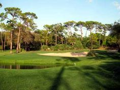 Innisbrook Resort South Course in Palm Harbor, FL Florida Golf Courses, Disc Golf Courses, Public Golf Courses, St Andrews Golf, Coeur D Alene Resort, Augusta Golf, Golf Course Reviews, Coeur D'alene, How To Find Out