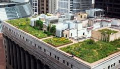 http://www.powerhousegrowers.com/37-benefits-of-green-roofs/ | @Powerhouse Growers