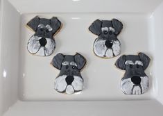 Everything About Cute Miniature Schnauzer Puppies Health Miniature Schnauzer Black, Puppy Haircut, Grandma Cookies, Heart Cookie Cutter, Dog Cookies, Sugar Cookies, Schnauzer Puppy, Dog Eyes, Shaped Cookie
