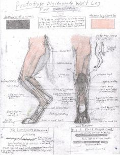 Old Leg Design by TheCostumeArchive.deviantart.com on @deviantART