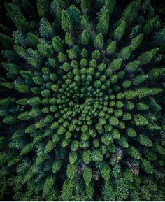 フォロワー3百万人、フォロー中43人、投稿4,117件 ― FANTASTIC EARTHさん(@fantastic_earth)のInstagramの写真と動画をチェックしよう