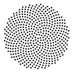 """A Sunflower's Fibonacci Spiral """"Math is a human language that describes nature."""""""