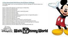 Disneyland15daychallenge-1.jpg 720×396 pixels