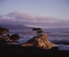 The Monterey, CA area is absolutely beautiful