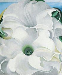 Bella Donna, 1939, Georgia O'Keeffe, collection O'Keeffe Museum, Santa Fe, New Mexico