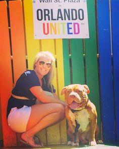 #orlandostrong #wallstreetorlando #wife#mother  #ukc #abkc #bbcr #pitbull #pitbulls #pitbullsofinstagram #dog #dogsofinstagram #nfl #mlb #nba #celebrity #dogs #puppy #puppies #puppiesofinstagram #dontbullymybreed #remy #gotti #bully #american bully #bullies #purebred  #razor #remy #substance #family http://tipsrazzi.com/ipost/1507451835936703155/?code=BTri3U9BIKz
