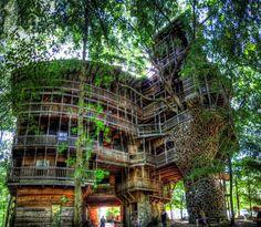 LA CASA DEL ÁRBOL MÁS GRANDE DEL MUNDO.  Alrededor de este árbol y durante 15 años se construyó esta vivienda sin planos ni modelos, y con el uso de materiales reciclados la expansión es de aproximadamente 3,000 metros cuadrados en 10 niveles.  #Arquitectura #Sustentable