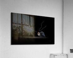 Cerebration Acrylic Print Sogetsu Ikebana, Blurb Book, Traditional Wallpaper, Black Sea, Book Gifts, Adhesive Vinyl, Photo Book, Wall Murals