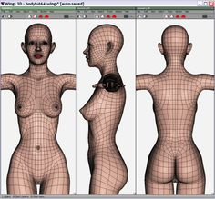 female hip topology - Google 検索