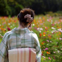 [フリー画像素材] 人物, 女性, アジア女性, 和服 / 着物 / 浴衣, 後ろ姿, 人と風景, 人と花, 花畑, 日本人 ID:201410180300