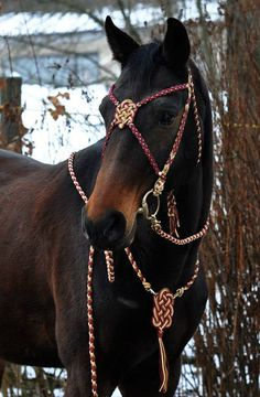 Hey, I found this really awesome Etsy listing at https://www.etsy.com/ru/listing/220881910/show-bridle-baroque-bordeaux-inkl-reins