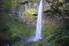 The other RSR (Rock Steady Running)...Rain Shadow Running, Washington State