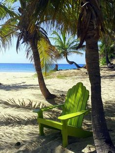 Green adirondack chair under some palms on the beach - Green Chair On The Beach Fine Art Print