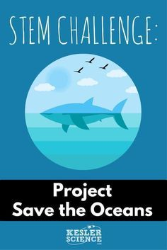 Help solve the ocean trash problem! Engage your students with an interactive STEM challenge! These activities are fun, hands-on learning experiences for middle school and upper elementary school kids. Lessons include engineering, math, science, physics, problem solving, and teamwork building ideas for the classroom. Inexpensive items needed. Project is TEKS and NGSS aligned. Grades 5th 6th 7th 8th 9th