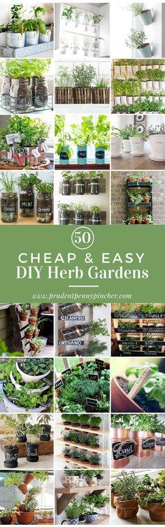 50 Cheap and Easy DIY Herb Garden Ideas