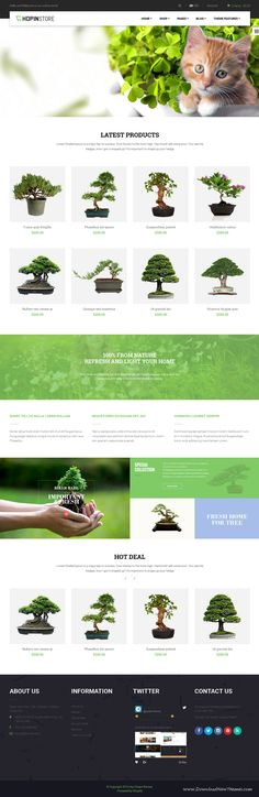 Ap Chopin is one of the most distinctive #Shopify themes which offer you with a variety of templates for choosing. With five separated Homepage layouts. Perfect for multipurpose eCommerce website. #bonsai #agriculture #store