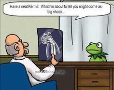 Kermit hand puppet X-ray.