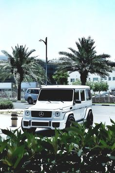 Mercedes G class. My heart skips a beat every time I see one on the street!