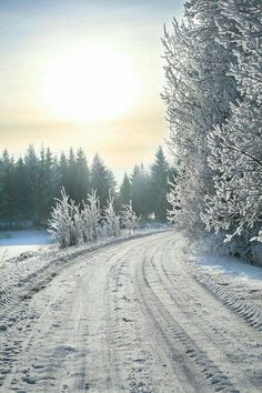 #winter white  #country roads