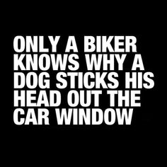Oh, so very true. The dog just wishes he had a pink helmet to stick his head out the window with :)