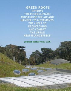 CEEweb (@CEEwebEurope) | Twitter Green Roof Benefits, Urban Heat Island, Living Roofs, Green Roofs, Day Left, Air Pollution, Health And Wellbeing, Urban Design, Climate Change
