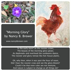 """The morning as I saw it.   """"Morning Glory"""" www.nancybbrewer.com"""