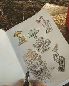 @sofpratto My Photos, Stuffed Mushrooms, Autumn, Illustration, Vintage, Art, Stuff Mushrooms, Art Background, Fall Season