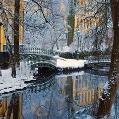 Winter Wonderland in NYC
