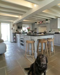 Country kitchen...pigeon grey units...oak bar stools .... hint of colour