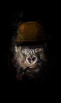 Gorilla Wallpaper, Lion Wallpaper, Funny Iphone Wallpaper, Monkey Art, Pet Monkey, Animal Paintings, Animal Drawings, Portrait Art, Pet Portraits