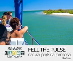 Fell The Pulse Natural Park Ria Formosa All Year Round...
