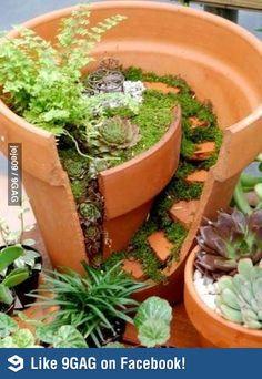DIY: Garden for ants