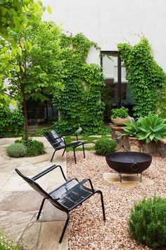 The rear garden consists of a large entertaining area paved with random-cut Castlemaine slate. Four linden trees (*Tilia cordata*) punctuate the hard surface, framing views from the house into the garden.