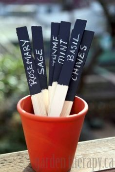 Make reusable plant labels from paint sticks and chalkboard paint. Use a chalk pen and the label won't wash away in the rain!