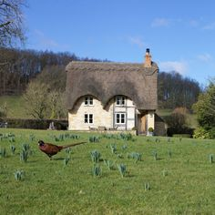 Set on the slopes of Bredon Hill in a truly idyllic and tranquil location, Field Cottage is a picture-book stone . Riverside Market, Gas Range Cookers, Inglenook Fireplace, Cathedral City, Rural Retreats, Outdoor Seating Areas, Short Break, New Forest, Private Garden