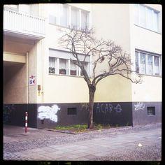 berlin bilder - a piece of urban idyll http://www.piecesofberlin.com/piecesofberlin/berlin-bilder-a-piece-of-urban_idyll/