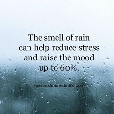 The smell of rain can help reducing stress and raise the mood up to 60 %. Lessons Learned In Life