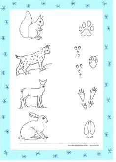 Massagesagan Leta djurspår i snön! Teamwork, Massage, Bullet Journal, Author, Teaching, Education, School, Montessori, Baby